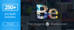 The Best Multipurpose WP Themes to Use in 2017